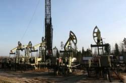 Заповедник в Израиле залило миллионами литров нефти